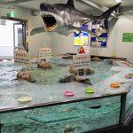 姫路市立水族館は面白い その2