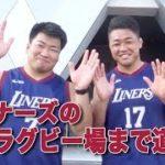 東大阪市のスポーツチーム 近鉄ライナーズとFC大阪