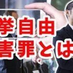 選挙の自由妨害罪による私人逮捕の正当性に関する質問主意書 ←浜田聡提出
