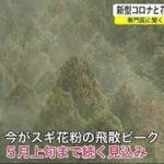 花粉症への対処法 國松先生の意見を参考に